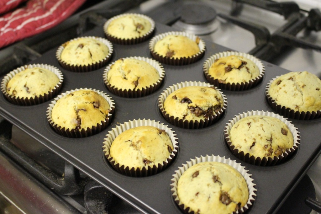 Cooked chocolate chip muffins cooling in a muffin tin