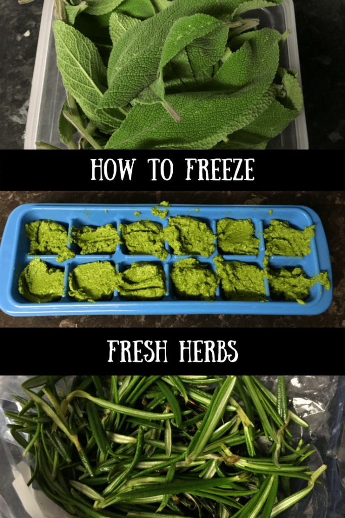 Sage, coriander and rosemary after being prepared for the freezer with text overlay that says how to freeze fresh herbs