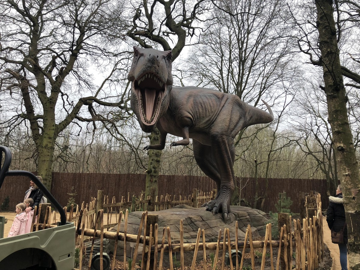 A look at a dinosaur at Worlds of Dinosaurs