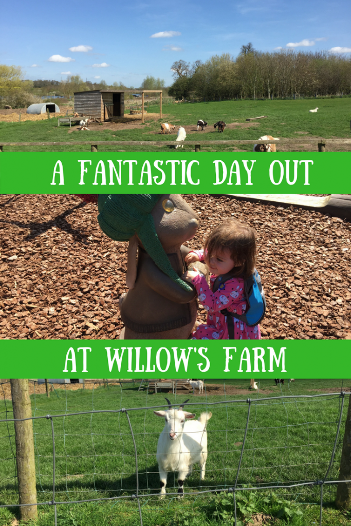 Animals, Daisy and a goat at Willow's Farm