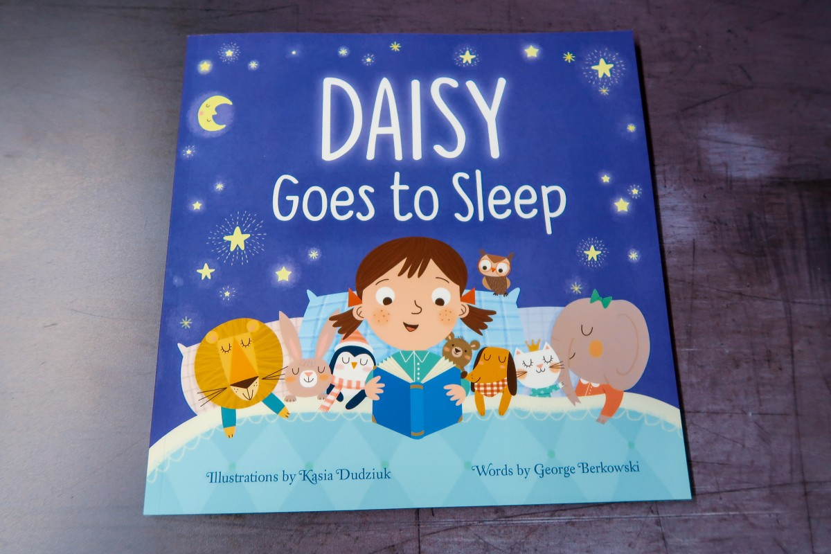 Gift ideas for a 3-year-old - Goes to Sleep book