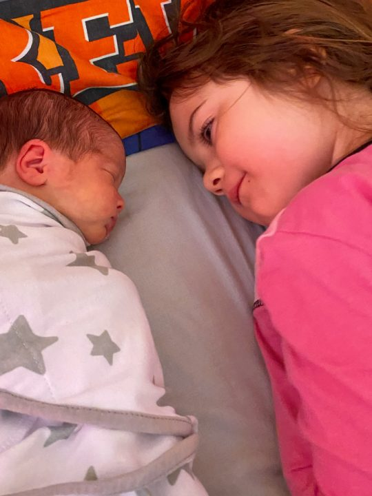 Daisy and Aurora laying in Daisy's bed together